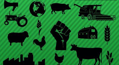 Einladung zum Stammtisch:  Aktiv für solidarische Landwirtschaft und Klimagerechtigkeit - 6. Juni im Gängeviertel